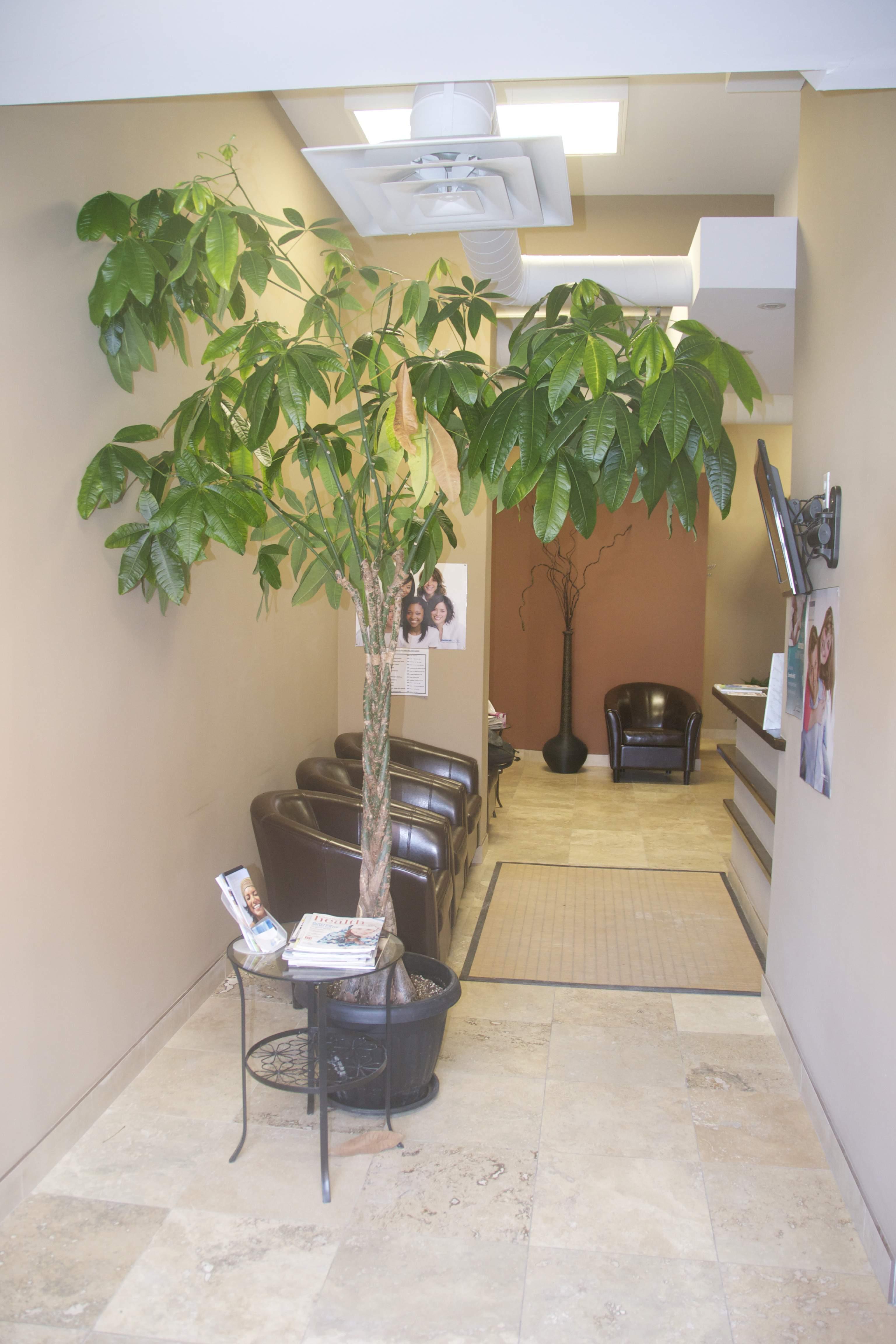 downtown ottawa dentist waiting room